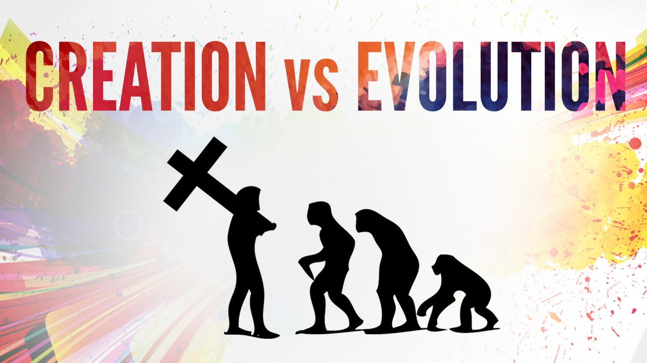 creation or evolution essay Evolution vs creationism essay  the issue is passionately debated since the majority of evidence is in favor of evolution, but the creation point of view can never be proved wrong because of religious belief human creation breaks down into three simple beliefs creation theory, naturalistic evolution theory, and theistic evolution theory.